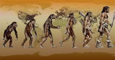 L'homme descend-il du singe? darwin Evolution
