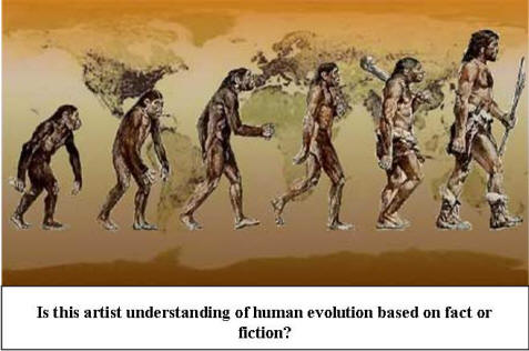 the effect of geography and natural selection in the evolution of apes and humans How did modern humans evolve from earlier forms of life many people imagine that humans evolved from monkeys, and that evolution occurs in some kind of linear progress, like the famous march of progress image but this is all incorrect humans did not evolve from monkeys or apes in fact, humans, monkeys, and apes all.
