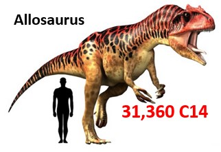 allosaurus-carbon-dating